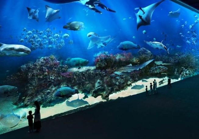 Tiket S.E.A Aquarium